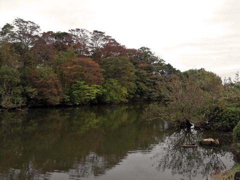 20111108hitori1