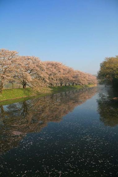 2012415hitori_2