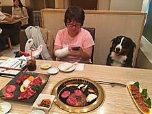 20151125hitori_7